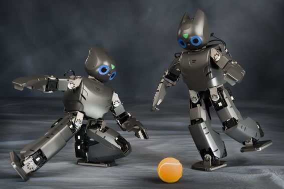 roboter test